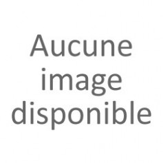 Tendeur courroie de traction Galeon (Astral) reference 3506